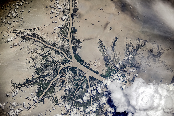 The Mississippi River Delta