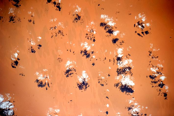 Краски Земли - Африка