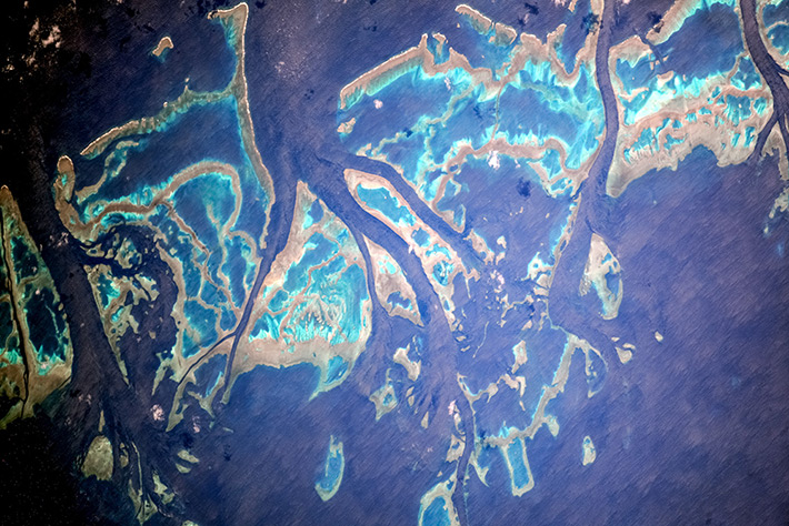 Coral reefs near Australia's East Coast