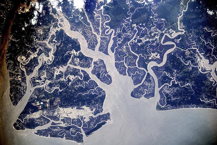 Остров Сент-Хелена, Южная Каролина. США.