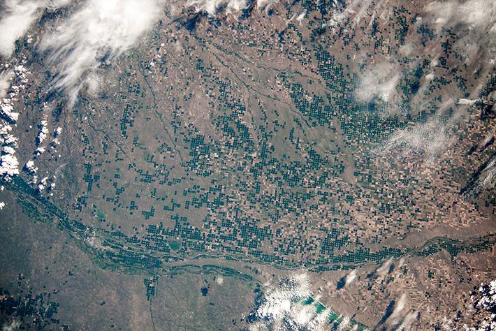 USA. Plantations in Nebraska