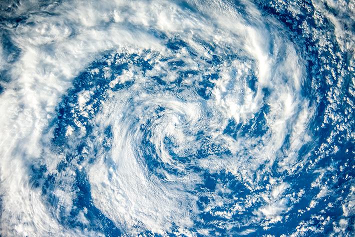 Тайфунчик